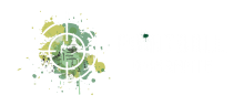 Paintball Amarante